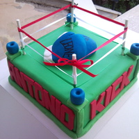 Kick Boxing Cake