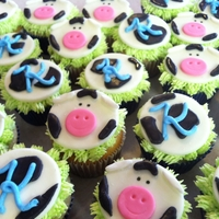 Moo! Cow Cupcakes Cow cupcakes for a little girl's 11th birthday party. I have step-by-step instructions on how to make these on my blog http://...
