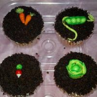 Garden Cupcakes Mini Veggies Made From Fondant And The Crumb Is Chocolate Cake Crumbled And Attached To The Frosting Garden cupcakes, mini veggies made from fondant and the crumb is chocolate cake crumbled and attached to the frosting