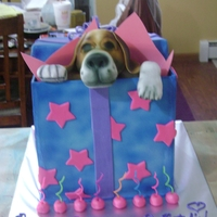 Beagle Puppy In Present This cake was for my daughter's 8th birthday. It was a 6 layer rainbow cake. Each layer was a different fruit flavor. The outside of...