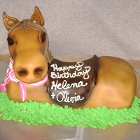 3D Horse Made this cake for a couple's daughter's combined birthday party. There was more I wanted to do with this cake, like add a bridal...