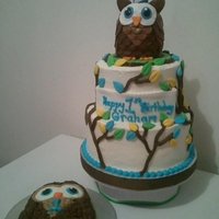 Owl Themed 1St Birthday Buttercream with fondant details. Cereal treat owl topper with fondant details