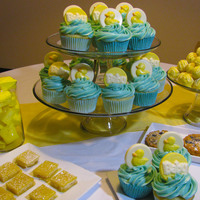 Baby Shower Dessert Buffet Cupcakes, cake truffles, marshmallows, blueberry frangipane tarts and lemon squares