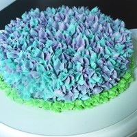 Hydrangea Cake I used a Wilton 2D tip for this cake and got the idea from this wonderful website http://glorioustreats.blogspot.com/2010/07/hydrangea-...