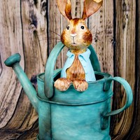 Peekaboo! Peter Rabbit, Where Are You? I LOVE Peter Rabbit, it's my favorite bedtime story! I was so excited tot turn the most thrilling moment of the book into cake, hope...