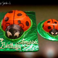Lady Bug 1St Birthday all buttercream and airbrushed