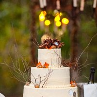 Outdoor Fall Wedding Bird Nest Theme The Cake Was All American Buttercream Icing With Bird Nests Made From Chinese Noodles Rolled In Choc Outdoor fall wedding, bird nest theme. The cake was all American buttercream icing with bird nests made from chinese noodles rolled in...