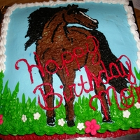 Horse Cake Chocolate cake covered with vanilla icing....