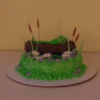 I Tried To Duplicate The Cake As Seen On Cake Central Only With Kermit Relaxing On The Log The Log Is Made From Rkt And Kermit Is Gumpa I tried to duplicate the cake as seen on Cake Central, , only with Kermit relaxing on the log. The log is made from RKT and Kermit is...