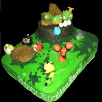 Attack Of The Angry Birds! 2 in 1 Cake!This cake was made for the birthday celebration of a father whose little 4 year old daughter had just been diagnosed with...