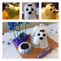 Dog Cake My daughter wanted a dog cake for her birthday party. She wanted a shih tzu with long hair and standing. This is what I came up. with. She...