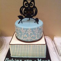 Owl Baby Shower Cake Baby Shower Cake. Design Based on the invitation. The design on top was made with my cricut cake.