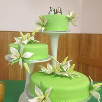 Lime Green Wedding Cake Wedding Cake for Mr. and Mrs. Roland Large