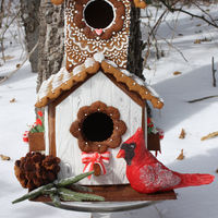 Gingerbread House Pine Cone And Sprig The Cardinal Is Made Out Of Modeling Chocolate Royal Icing And Fondant Accents This Is My First I  Gingerbread house, pine cone, and sprig. The cardinal is made out of modeling chocolate. Royal Icing and fondant accents. This is my first...
