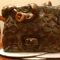 1St Time Purse Cake   Practice Coach Cake using left over fondant