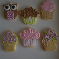 Potted Flower And Owls Glaze Icing on sugar cookies. Ice cream cone cutter to make the flower pot cookie