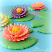 Waterlily Cookies Waterlily cookies on lily pad cookies