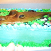 Gator Cake Buttercream with RKT and fondant gator, choc candy rocks