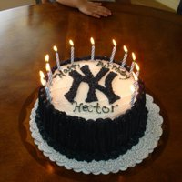 Yankee Cake My sons birthday cake, He loves the Yankees