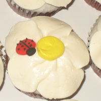 Buttercream Flower Cupcakes With Royal Icing Ladybugs