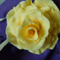 Yellow Rose Rose made of fondant /gumpaste mix