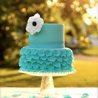 Petals Cake This is my first petals cake. All petals are made in delicious white modeling chocolate that adds not only a beautiful way to decorate a...