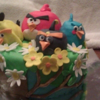 Angry Birds B-Day Cake White cake with strawberry filling. Angry birds for a 15 year old.