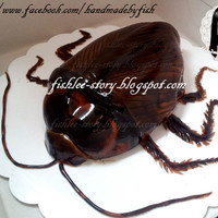Cockroach Cake >. It is Guiness Stout Dark Chocolate Cake with chocolate ganache and covered by fresh mint flavor fondant icing.