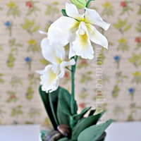 Sugar Cattleya Orchid Cake Flower pot cake with sugar orchids and fondant accents.