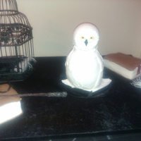Hedwig The Owl From Harry Potter Hedwig the Owl, books, inkwell and snitch - choc mud cake - harry potter themed
