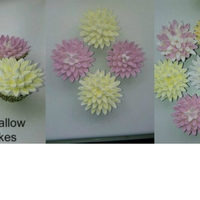 Marshmallow Cupcakes apologies for the picture quality x