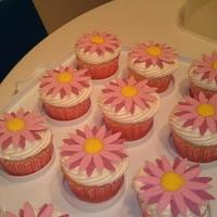 Daisycakes! made for the welcoming of a baby girl! love my new daisy cutters