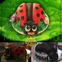 Lady Bug   three dimensional cake quantity of 10x4 inch diameter. chocolate cake covered with fondant with royal icing.