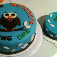 Look Whooo's Turning One!