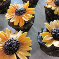 Black-Eyed Susan Cupcakes I made these for a rehearsal dinner, Chocolate Fudge WASC Cake with Very Rich Chocolate Frosting.