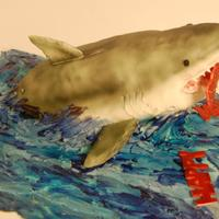 Shark! * Shark cake. shark is a rice krispee treat with gum paste accents. buttercream frosting on a vanilla cake