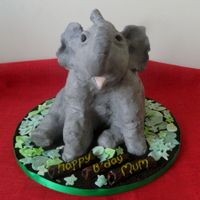 Leo The Elephant A banana cake with honey buttercream filling, covered with modelling choc, modelling choc ears and trunk too, first animal cake, TFL :)