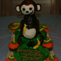 Monkey Cake Made this cake for my nephews birthday! It was my first cake ever and first time working with modeling chocolate and fondant! Any advice...