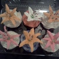 Lily Cupcakes