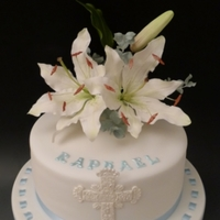Raphael's Christening Cake Lilies