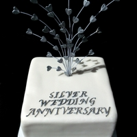 Silver Wedding Anniversary Does what it says on the tin!