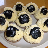 Sheep Cupcakes these were lemon cupcakes with vanilla buttercream frosting and fondant sheep faces