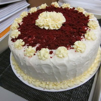 Rv Cake I sometimes help out with education and development at my job. To reward the students with a job well done, I decided to make them a red...