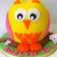 "Adelyn's Owl Smash Cake 4"" tall Owl smash cake for little Adelyn's 1st Birthday photoshoot. I've always wanted to create an owl cake inspired by..."