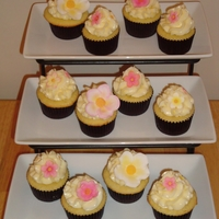 Pink And Yellow Cupcakes Lemon cake, raspberry filling, lemon smbc, gumpaste flowers.