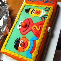 Sesame Street Cake marsepain with cream and BC inside! for a 2 year old, he loved it!! :)