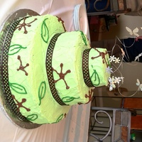Dragonfly Baby Shower Cake I made this for my nephew's baby shower.... his nursery was decorated in browns and greens, nature theme...and his mom loves...