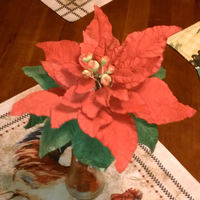Poinsettia This Is My First Time Doing A Poinsettia Poinsettia, This is my first time doing a poinsettia.