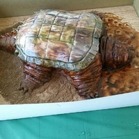 Alligator Snapping Turtle Cake! I know this cake is soooo ugly it's plum cute!!! LOL!!