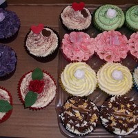 All Sorts Of Coloured Cupcakes